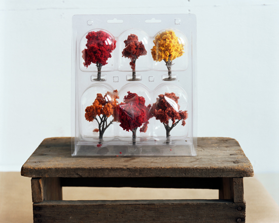 Six Deciduous Trees, 2010