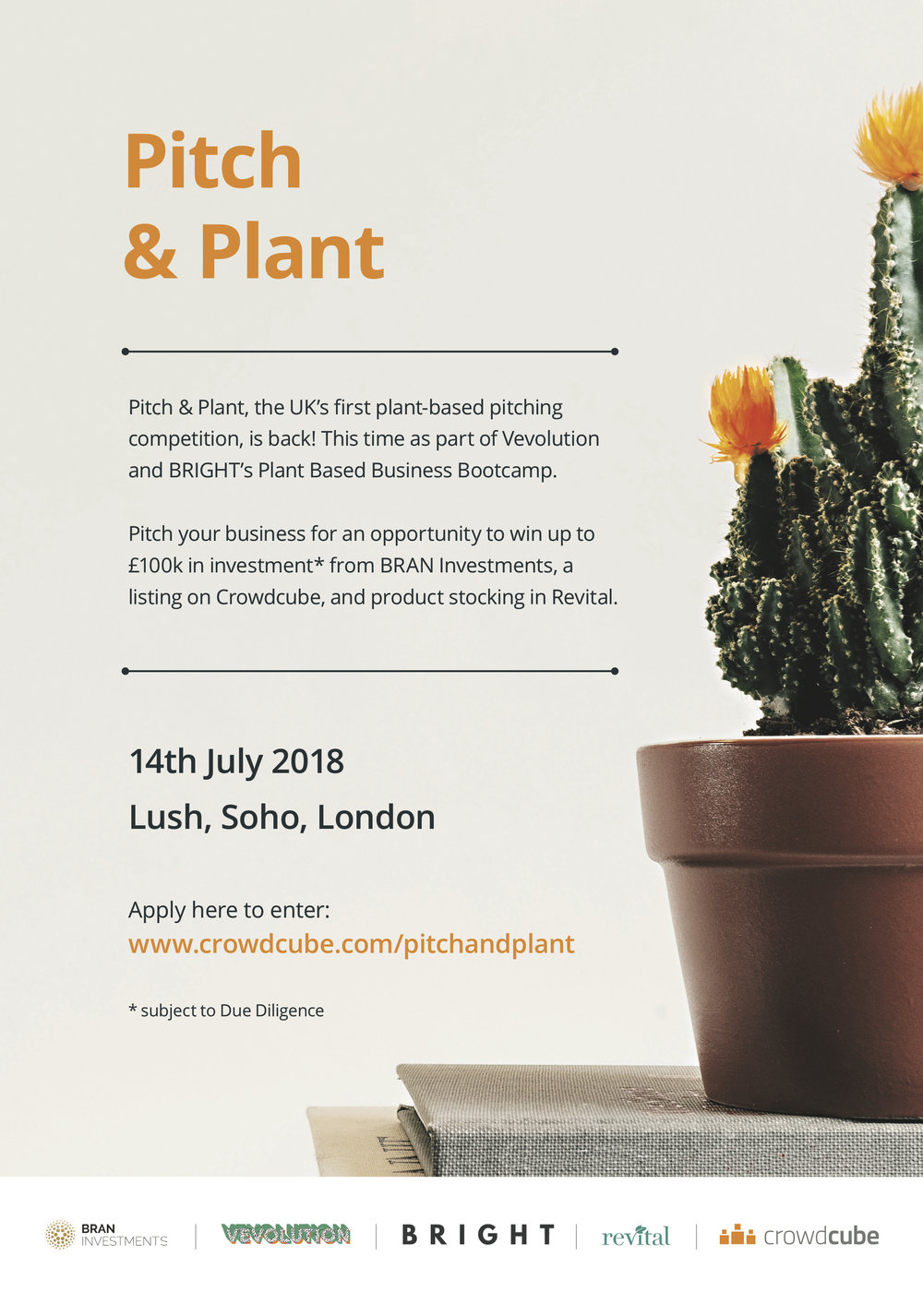 Vegan Pitch And Plant | Bright Zine Vevolution Business Bootcamp