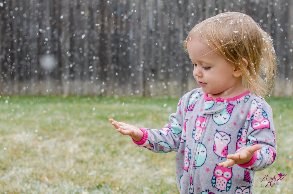 winter snow mini photo session kid playing in snow