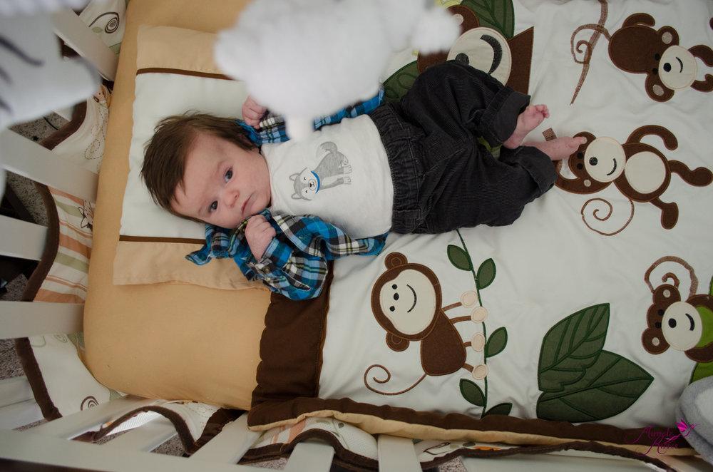 Lifestyle jungle milestone boy session in crib