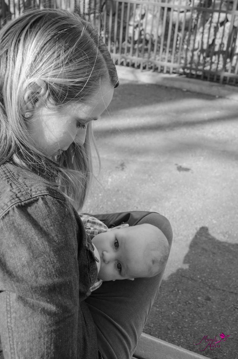 black and white at the denver zoo, normalize breastfeeding
