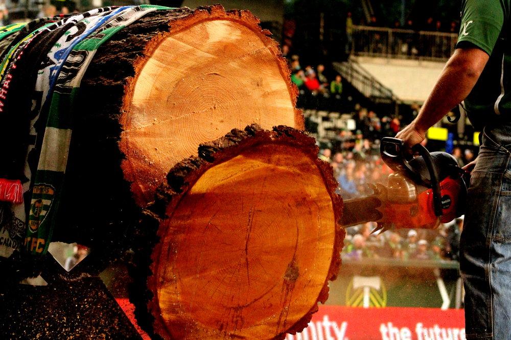 Timbers 5.jpg