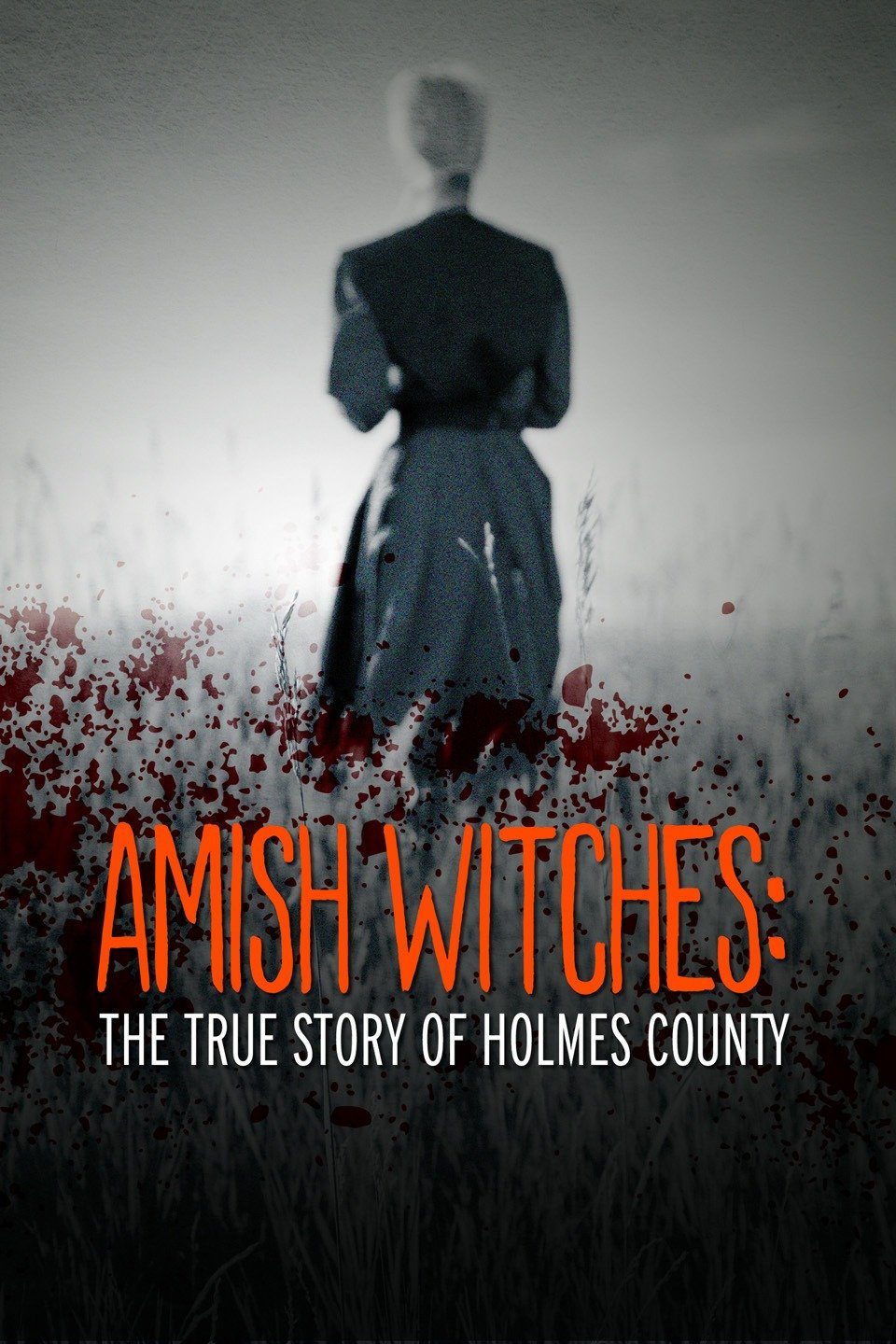 Amish_Witches_The_True_Story_of_Holmes_County_2016_12521289.jpg