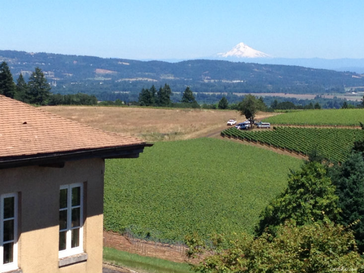 Oregon Wine Regions Plus a Pinot Noir Salmon Pairing | CaretoPair.com