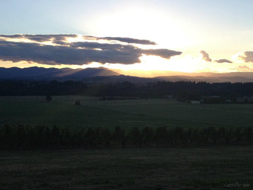 Willamette Valley Sunset | CaretoPair.com