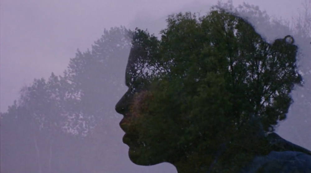 Money Don't Grow on Trees - Directed by Emmett Kerr-Perkinson