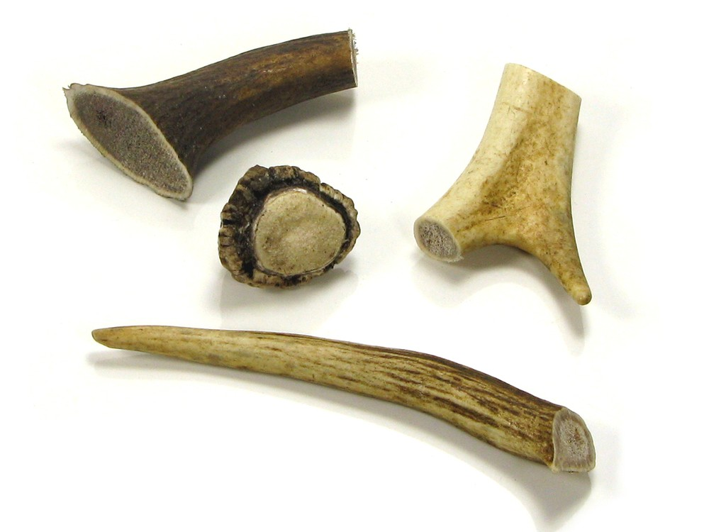 Tools started being made out of antler and bone.  ( https://s3-eu-west-1.amazonaws.com/abbeyhorncouk/i/pzi/stag_antler_pieces_stb.jpg?_t=15128151258 )