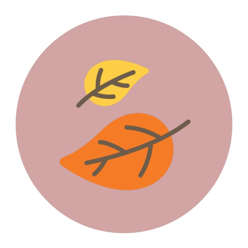 QS | Logo | 14.png