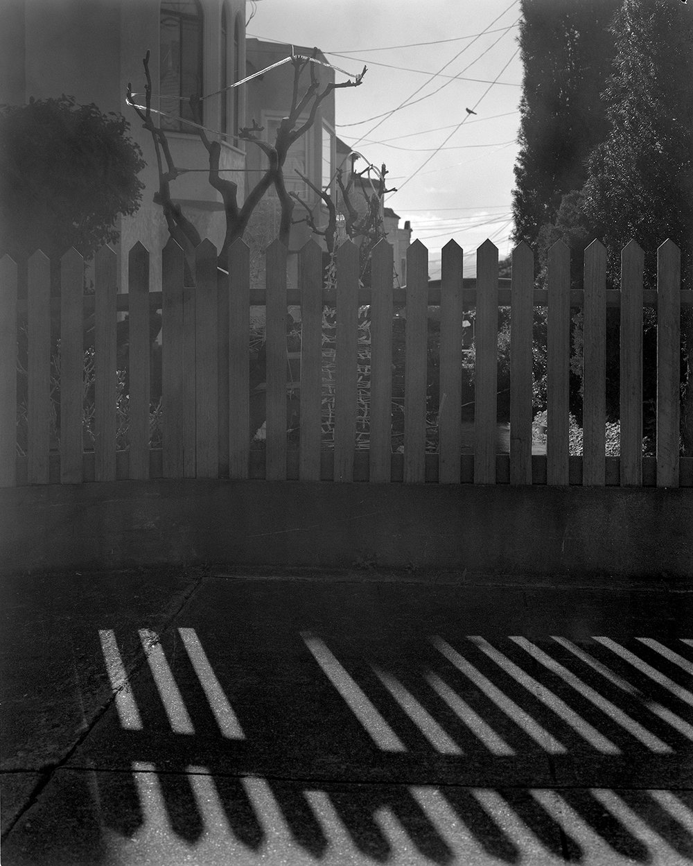Fence Shadow, Sunset District, San Francisco 2017