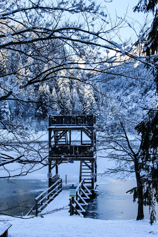 Kranjska Gora | Lake Jasna
