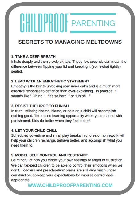 SECRETS TO MANAGING MELTDOWNS IMAGE.png