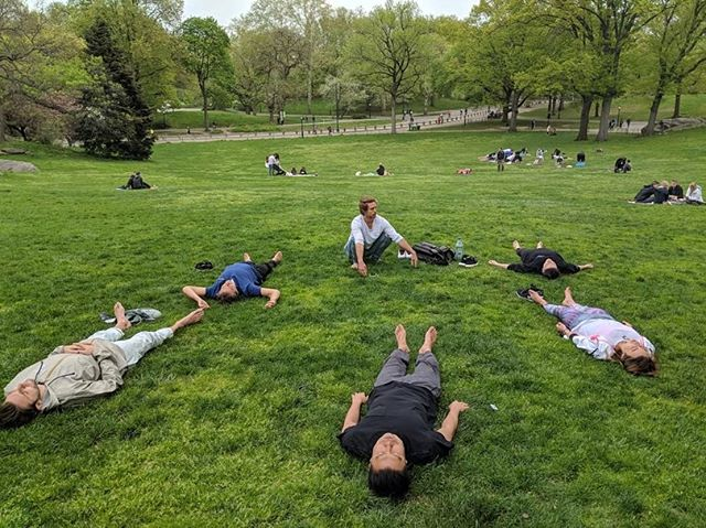NYC Walk & Talk in Central Park this morning. Breathing & dream weaving with the East Coast Presence Gang. #thewildfireinitiative #walkandtalk #nobeliefsrequired