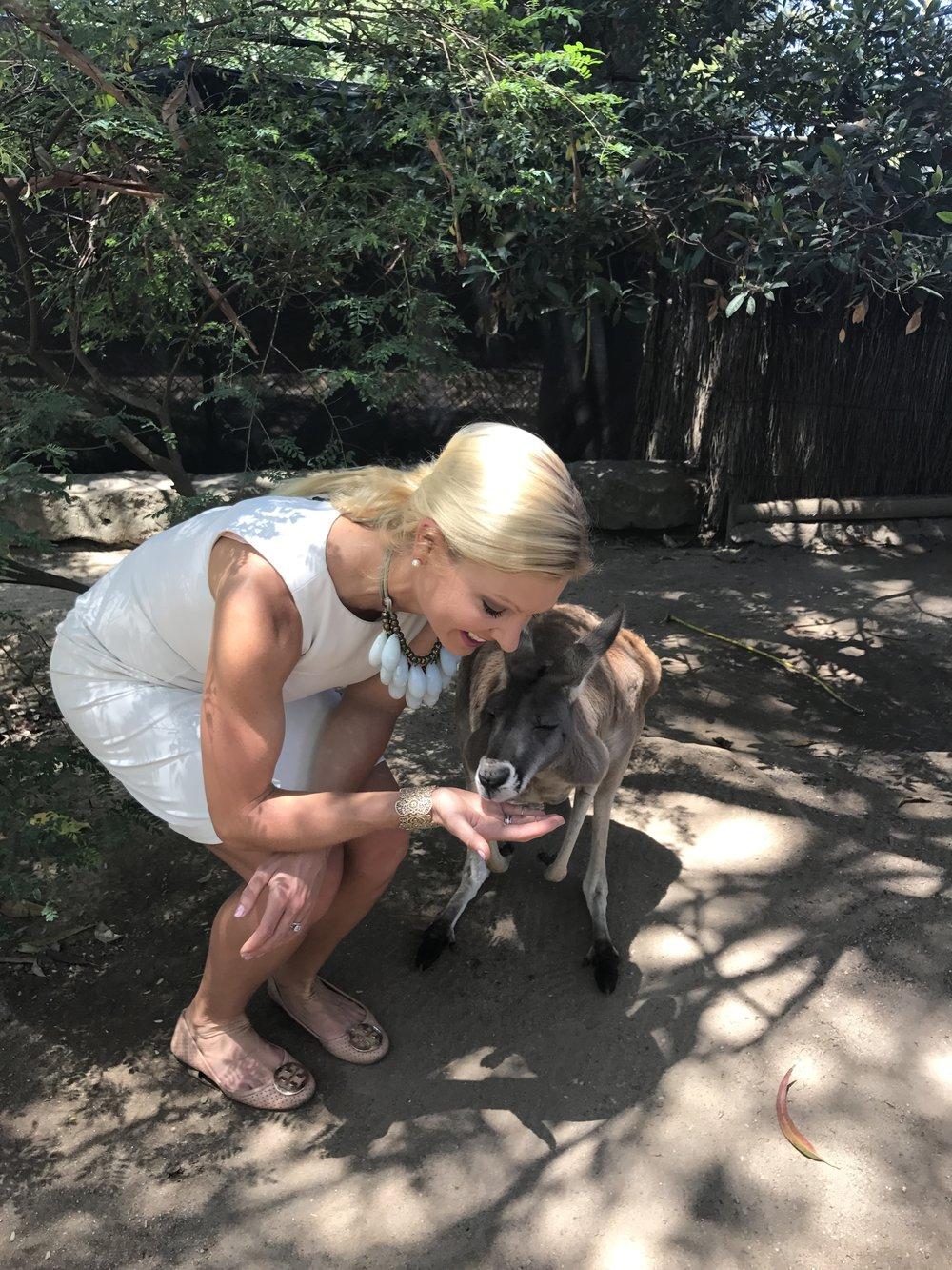 anna kooiman red kangaroo taronga zoo sydney www.annakooiman.com fitness travel lifestyle australia