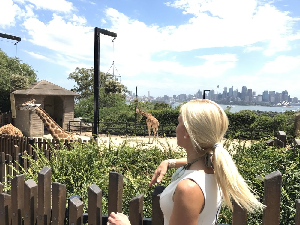 giraffe opera house sydney harbour bridge www.annakooiman.com anna kooiman fitness travel lifestyle