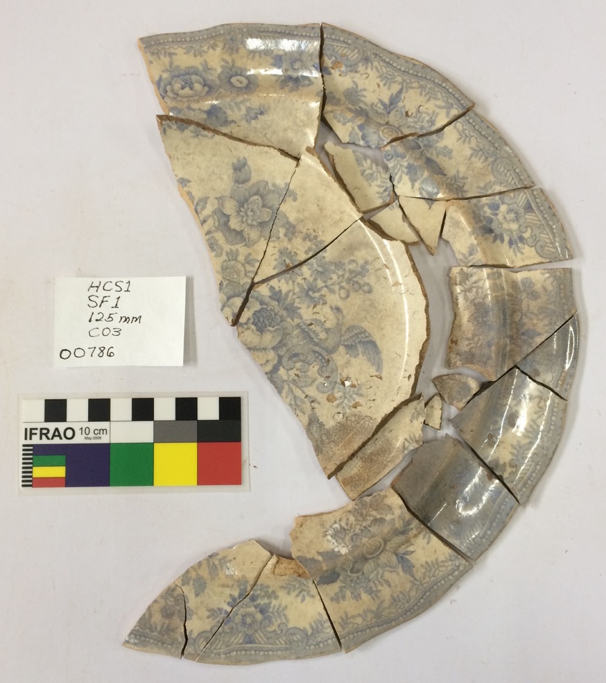 One of the 'Asiatic Pheasant' (British plates inspired by Chinese patterns) found in the excavation (photo: Paul Macgregor)