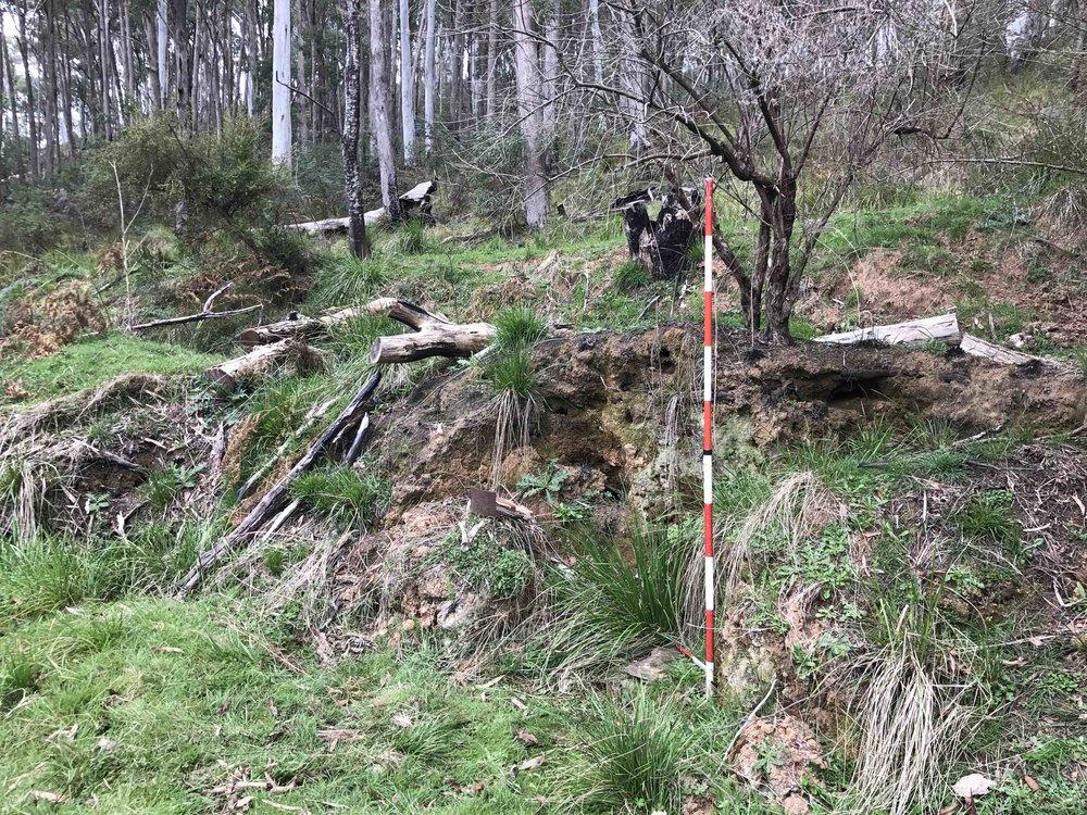 Stone Feature 1 - prior to excavation (photo: Melissa Dunk)