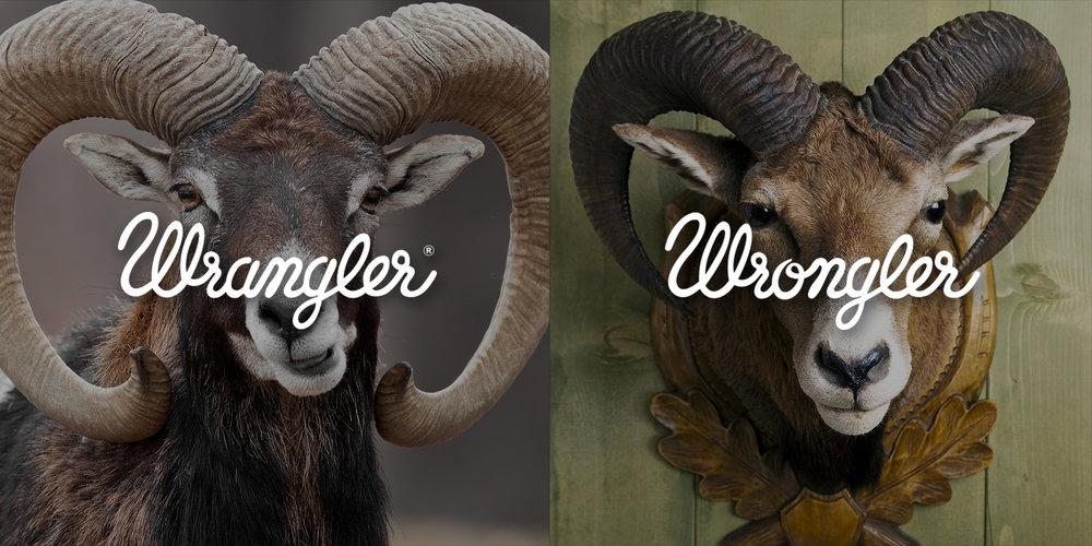 WRANGLER_WRONGLER__0001_13.jpg