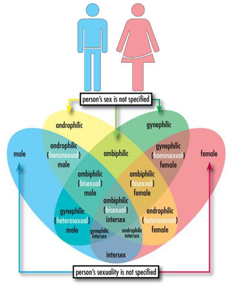 gender-768x960.jpg