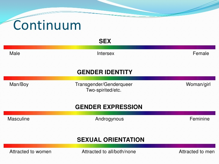 Gender sexuality continuum