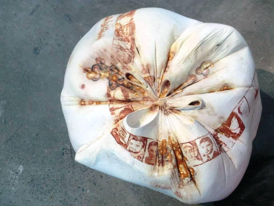 Hadia Gana Rubbish bag , Zarda 2012-2.jpg