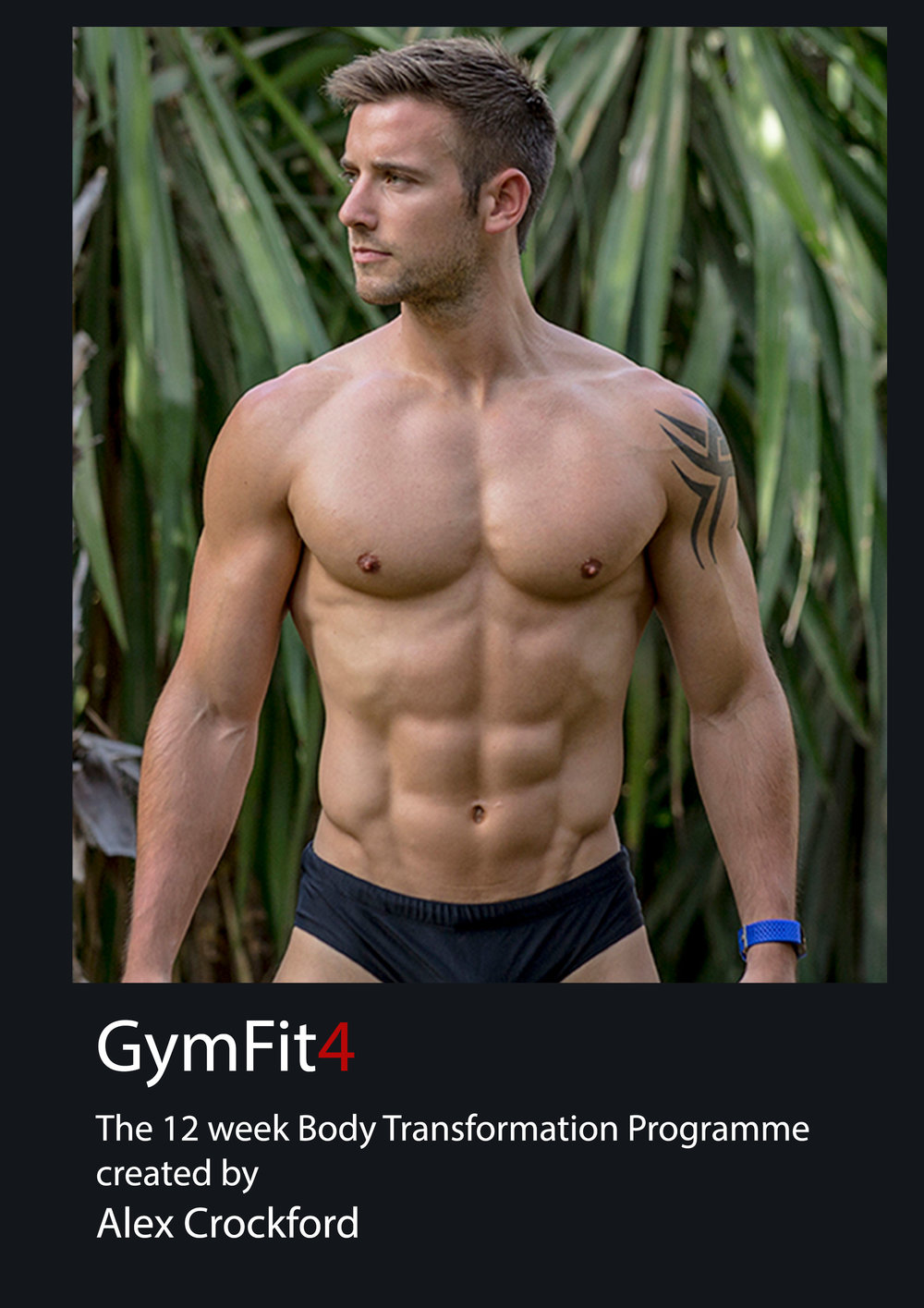 GymFit-4---Trianing.jpg