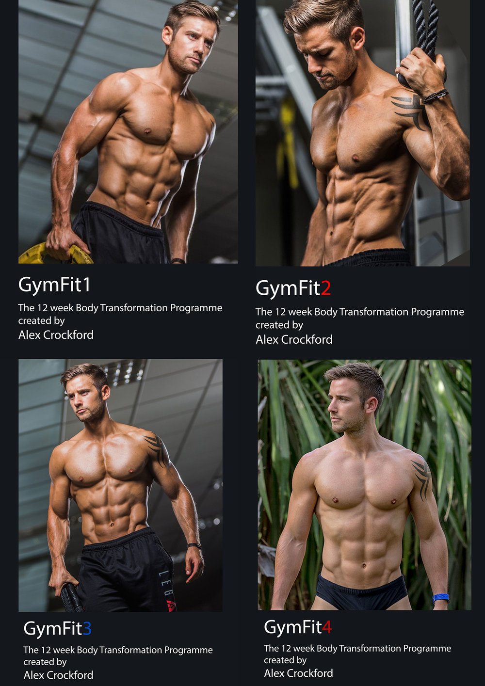 GymFit---1-year-plan.jpg