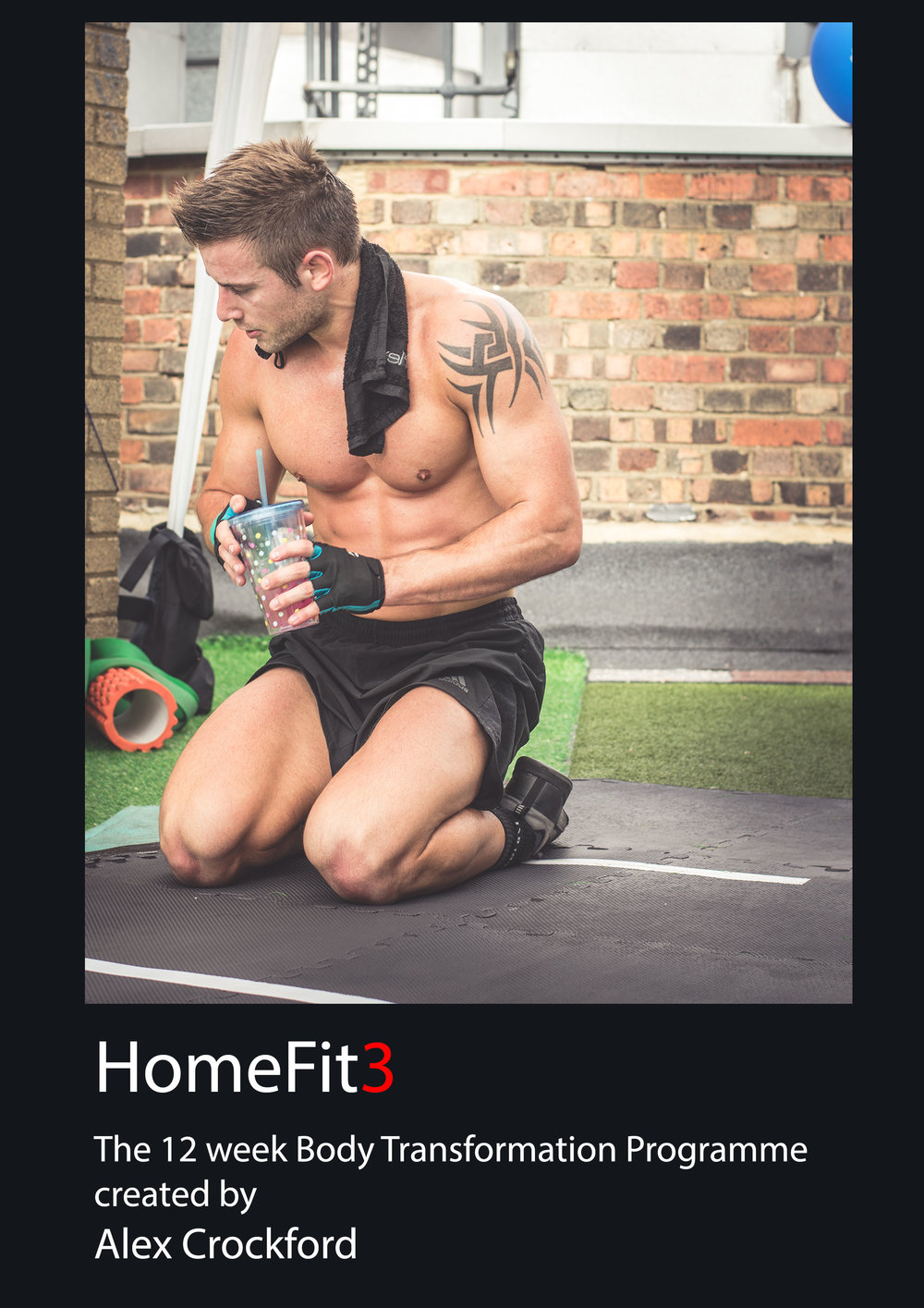 HomeFit 3 - Trianing.jpg
