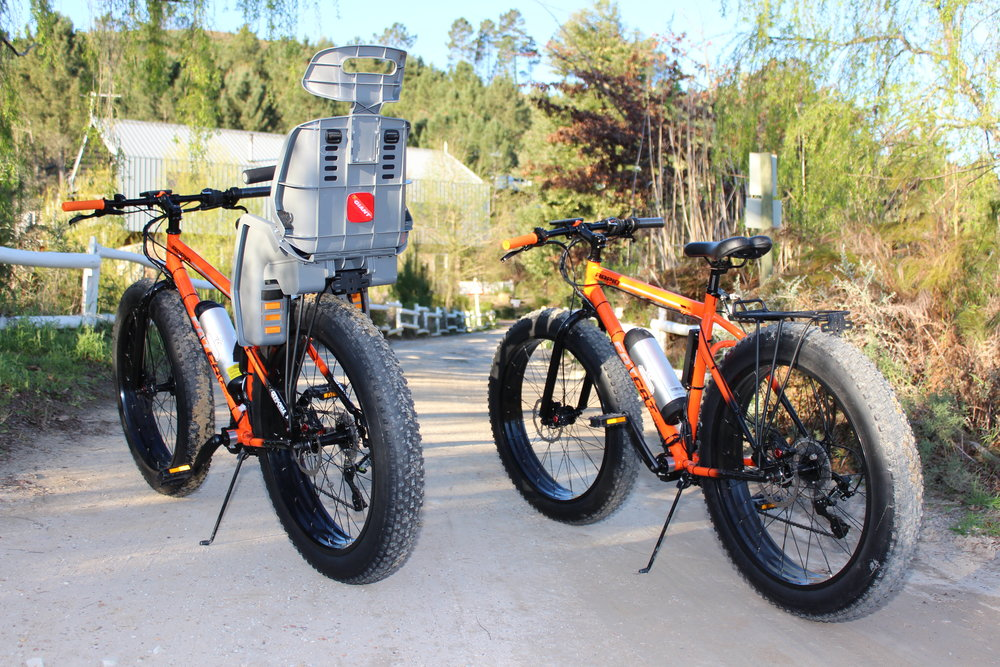 electric bikes e-bikes south africa riverclub observatory chilled squirrel