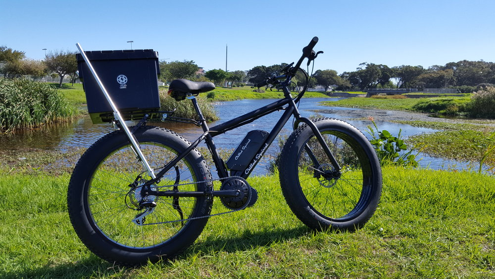 electric fat bikes sand e-bikes south africa chilled squirrel