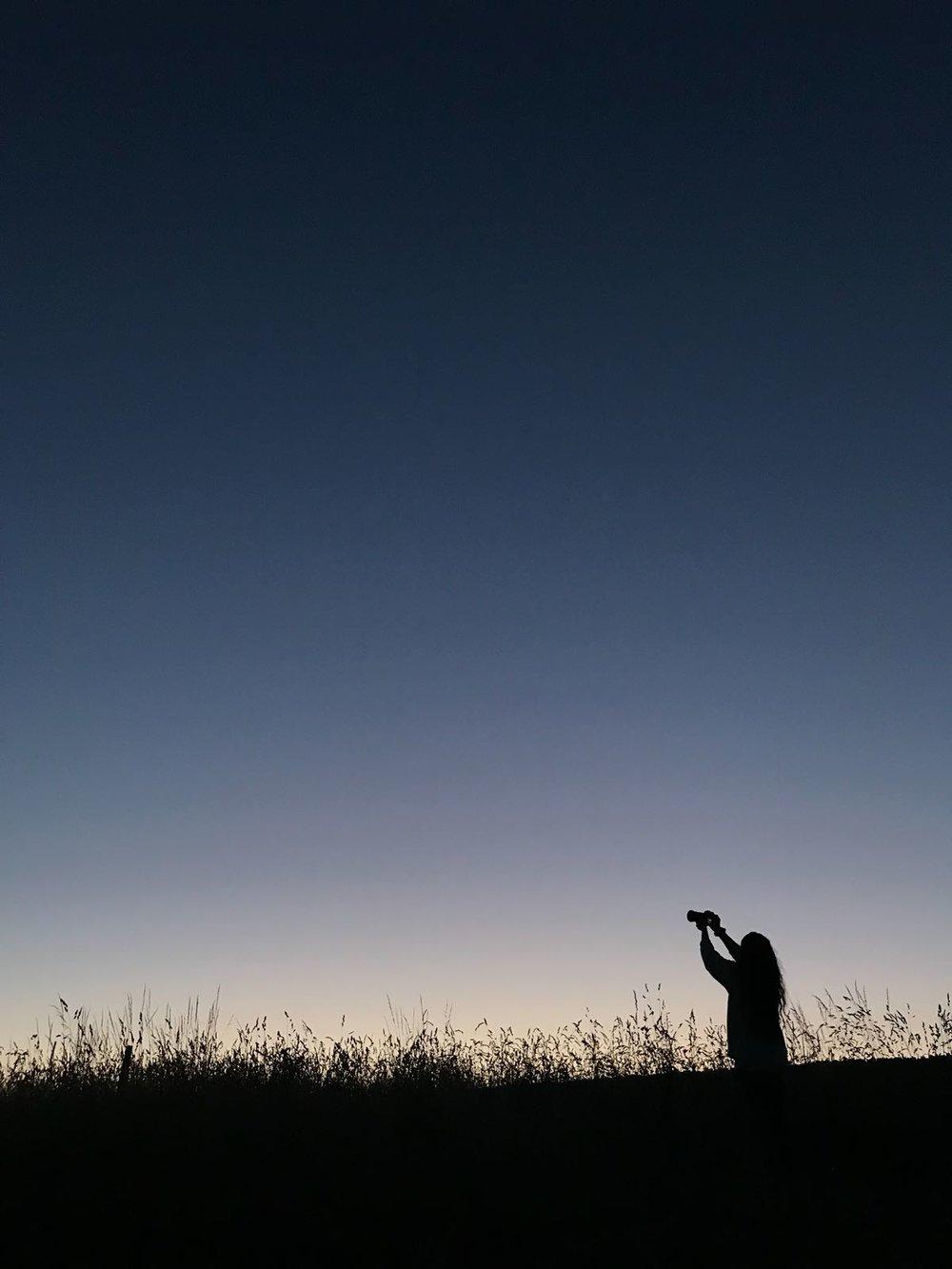 Le piège golden hour.jpeg