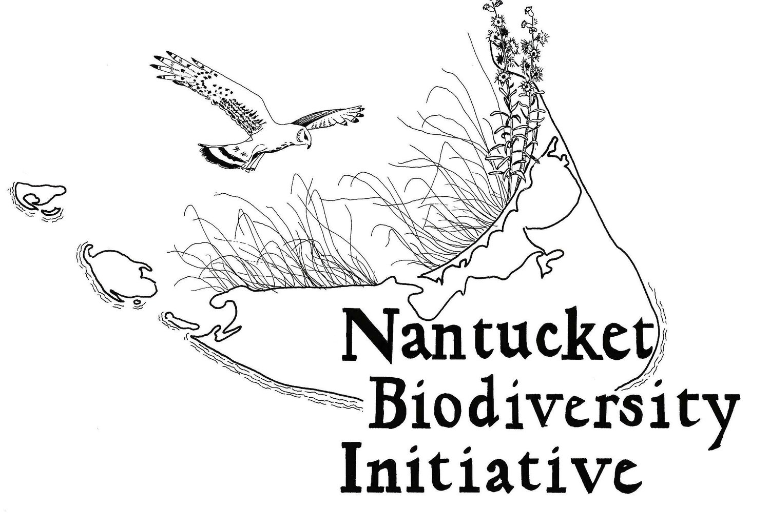 Nantucket Biodiversity Initiative