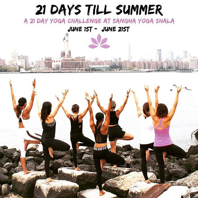 Two more days left to join our yoga challenge! What are you waiting for? 🙏🙏🙏 bit.ly/sanghayogachallenge  #yogachallenge #yogainspiration #practiceandalliscoming #breathe #yogaeverydamnday #williamsburg #yogawilliamsburg #brooklynyoga