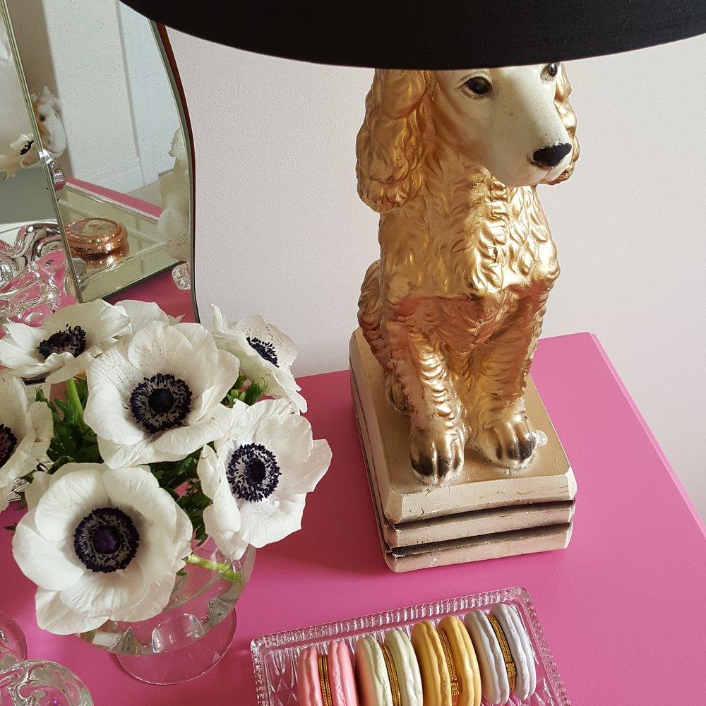 dog flower 2.jpg