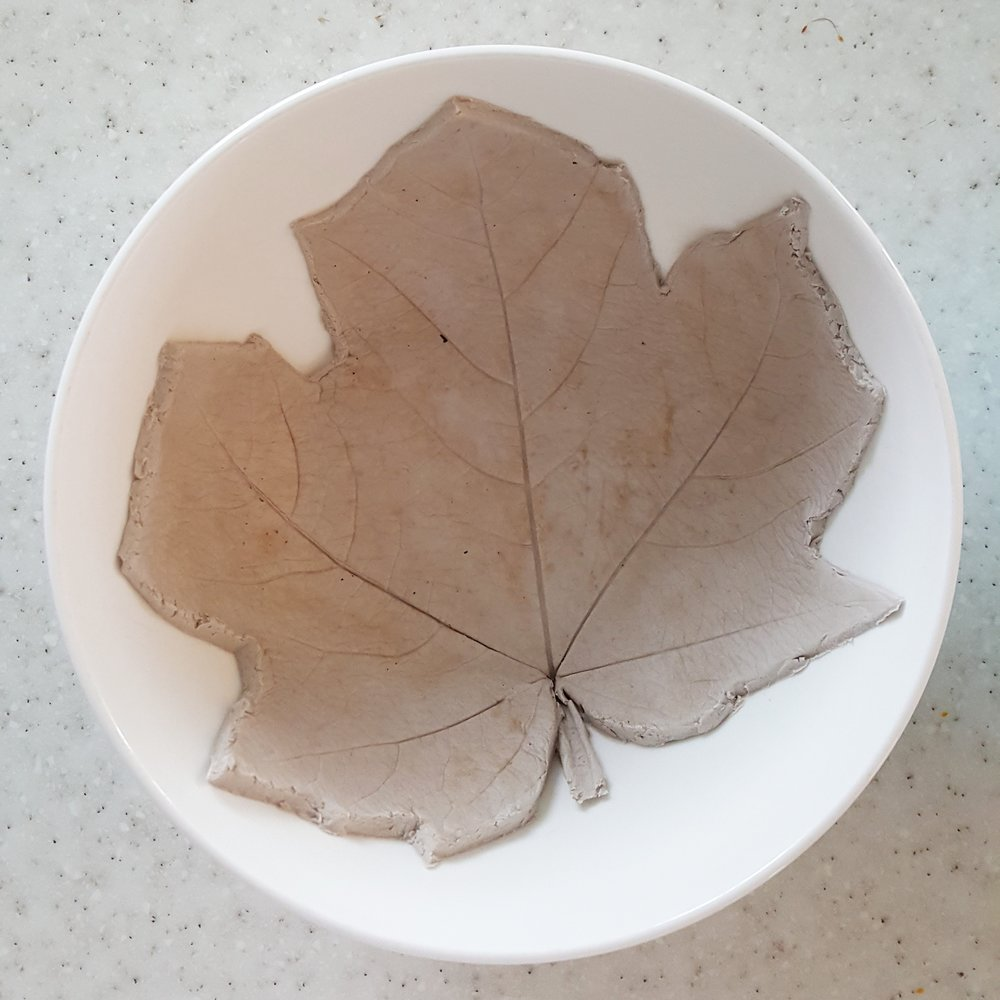 Step 4: Matthew's maple leaf drying in a bowl