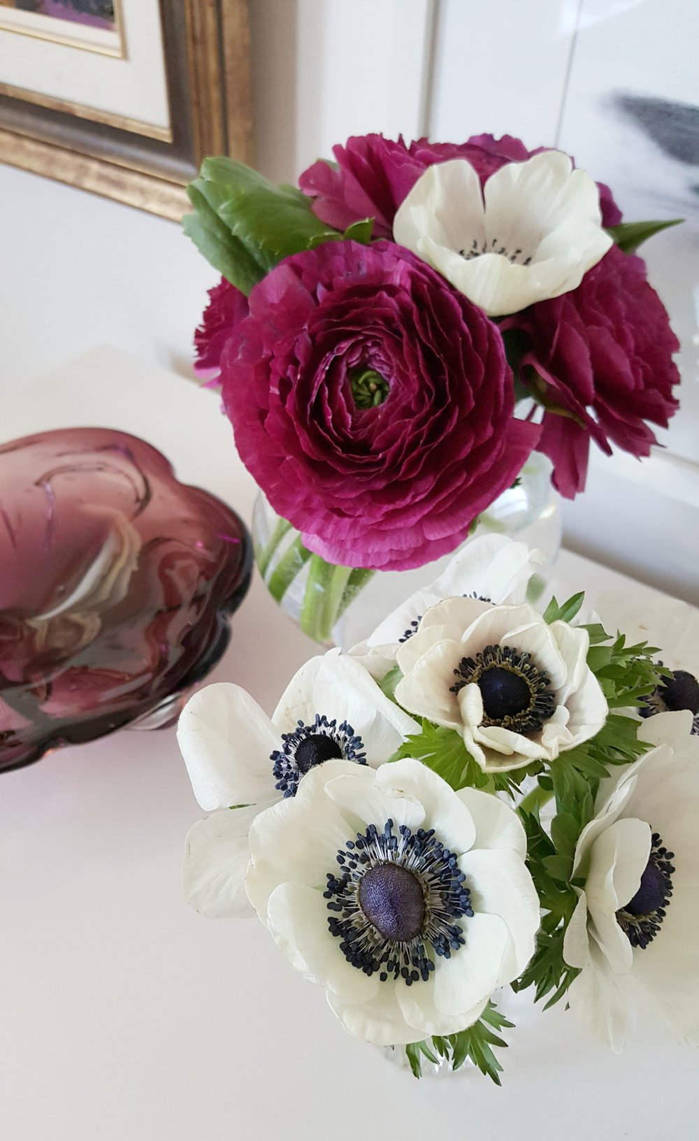 flowers up close.jpg