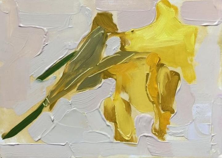daffodils by lynne Millar