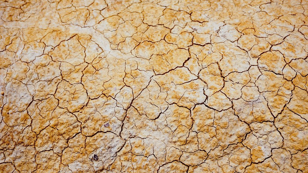 How much did the 2016 drought cost your utility?  -