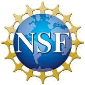 NSF logo.jpeg
