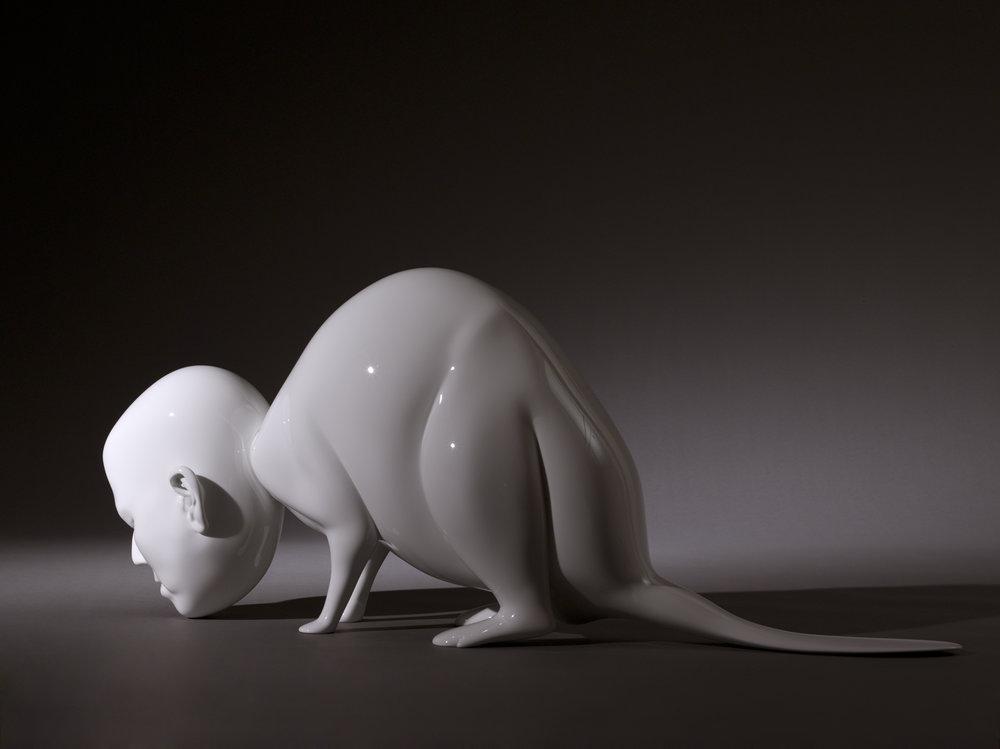 04_white_beaver.jpg
