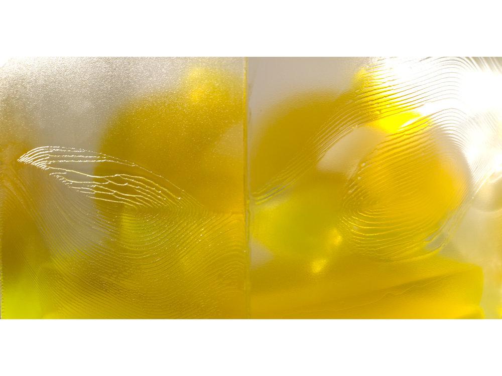 04 Pondick Encased Yellow (RP-126).jpg