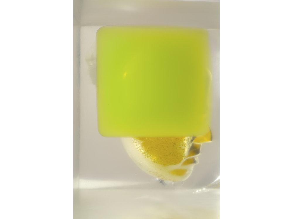 04 Pondick Encased Yellow Green (RP-124).jpg