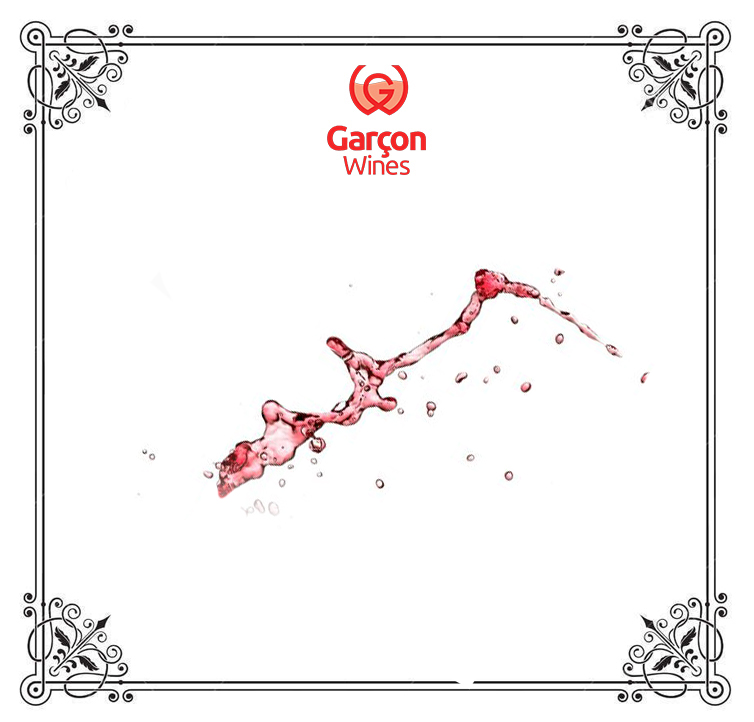 GarconWinesBlog2.jpg