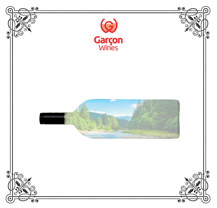 GarconWinesBlog7.jpg