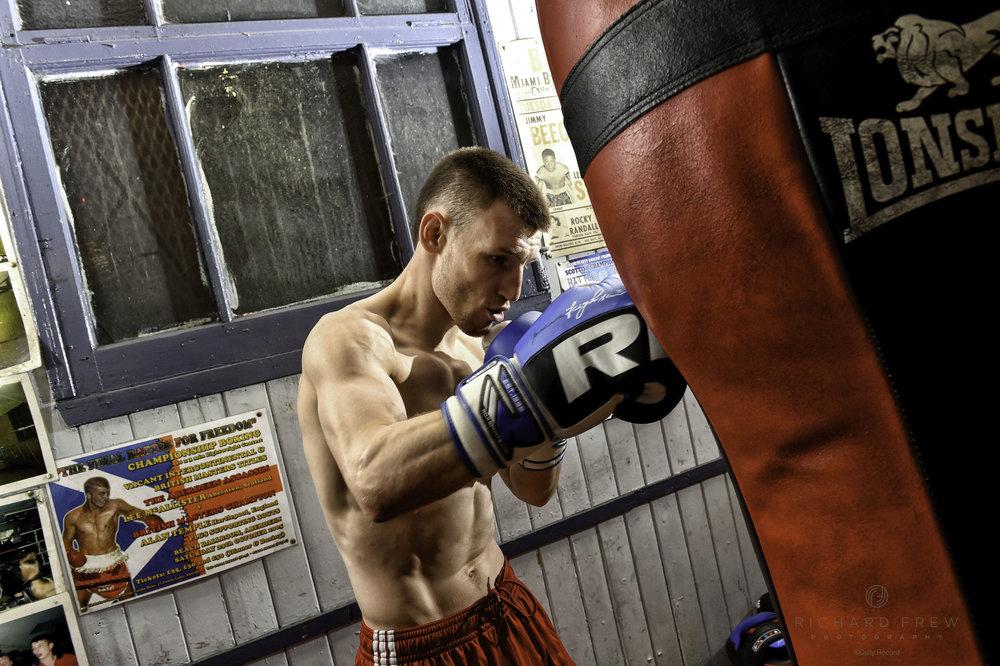boxer1 copy.jpg