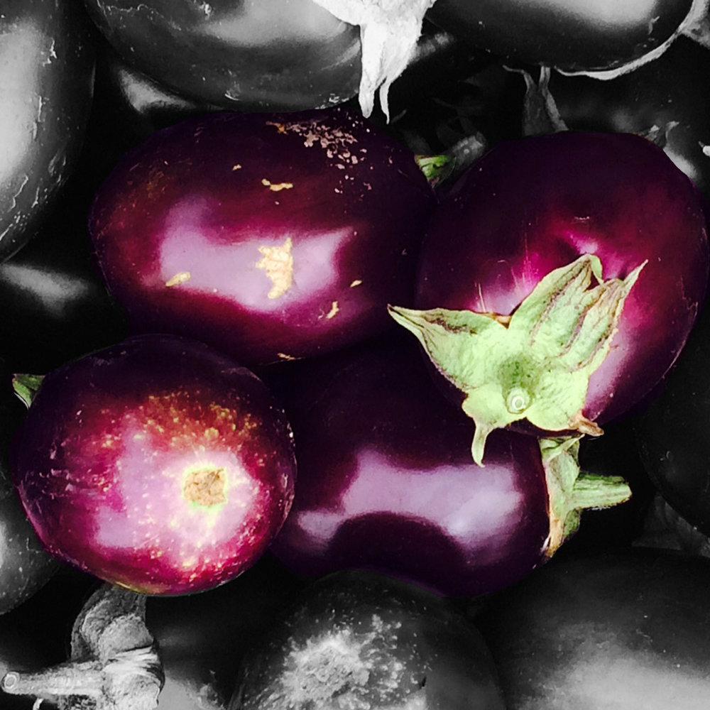 aubergine-site.jpg