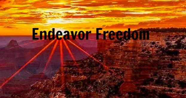 Endeavor Freedom