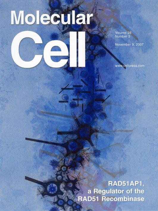 molecular-cell-PORTADA-còpia.jpg