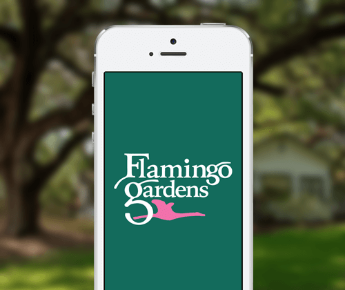 FlamingoGardens-Cuseum-Mobile-App.PNG