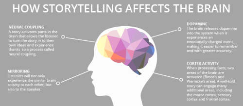 how-storytelling-affects-the-brain.png