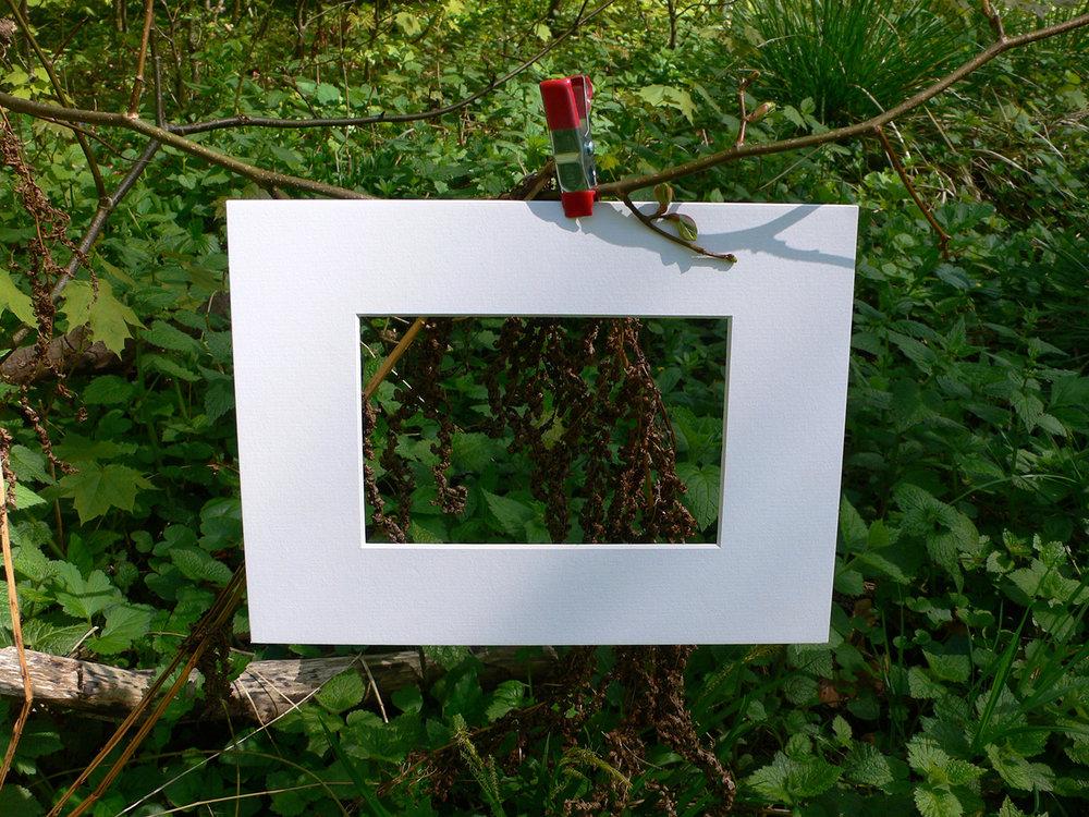 natur_passe.jpg